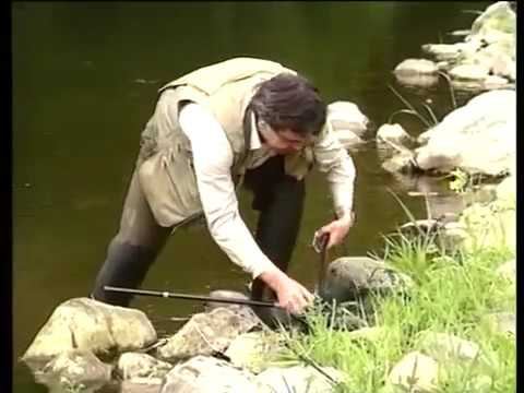 Wędkarstwo muchowe – Zabawa w muchę